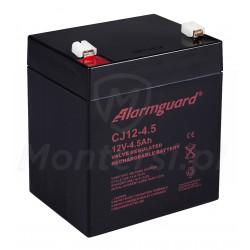 Bezobsługowy akumulator CJ12-4.5