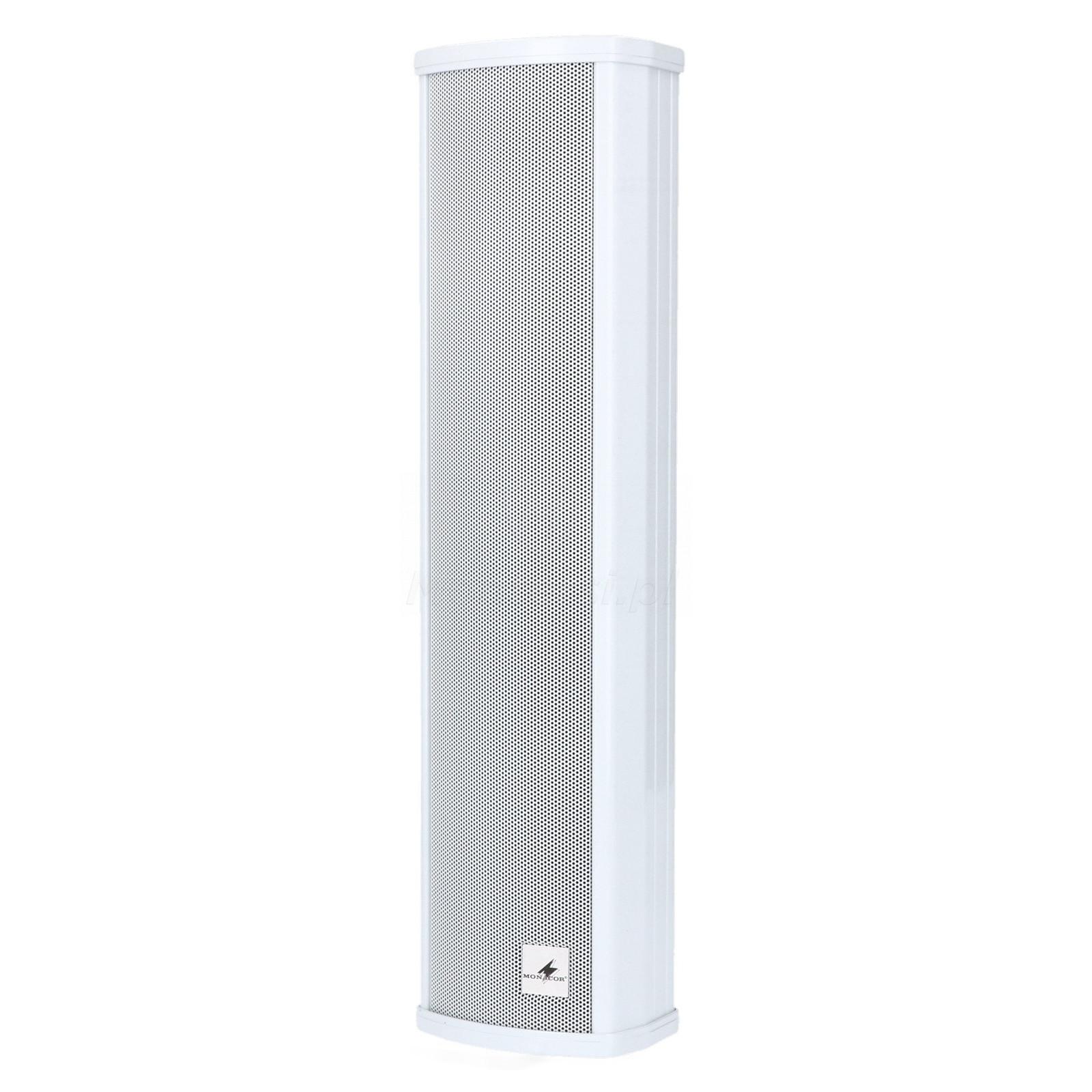 Głośnik kolumnowy PA ETS-230/WS